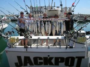 new-fish-2009-004